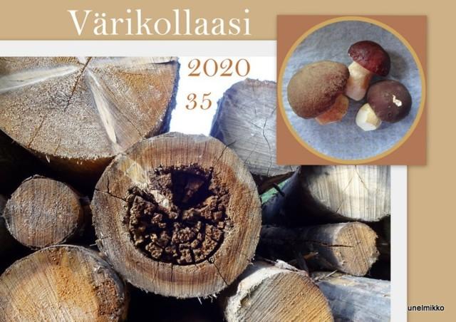 2020-08-091.jpg