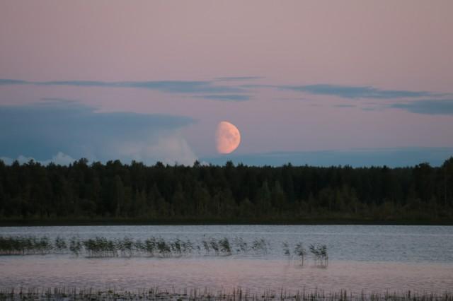 Kuu.jpg