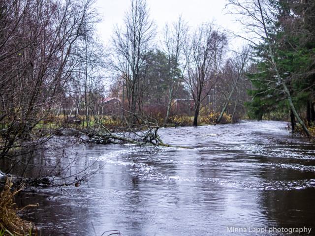 Tulvakatsaus-6.jpg