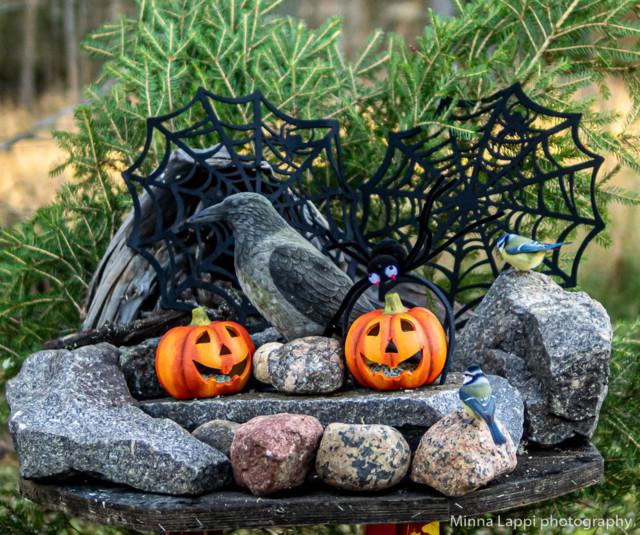Halloween-tunnelmaa-9.jpg