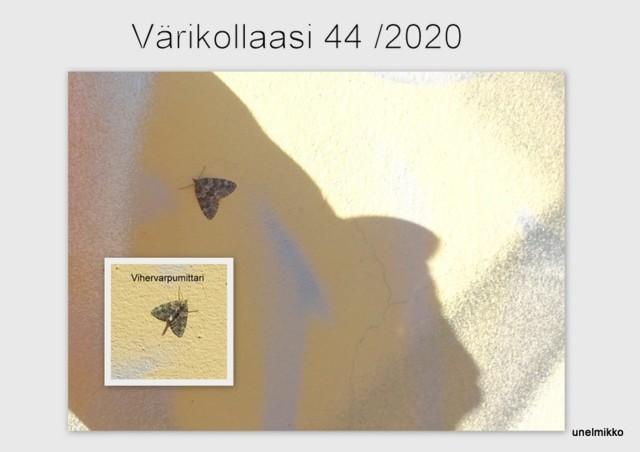 2020-09-131.jpg