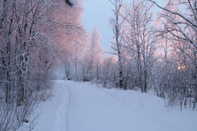 Talvenihmemaa.jpg