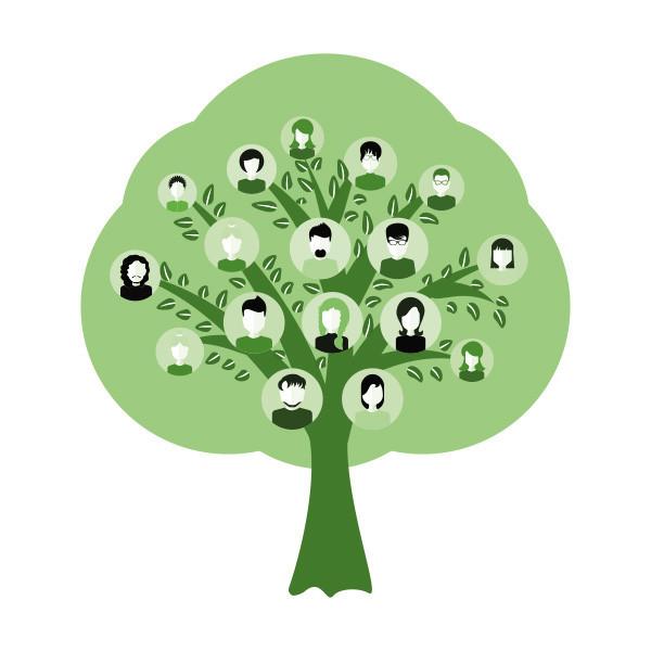 Sukupuu-ja-sosiaalinen-atomi-perhety%C3%
