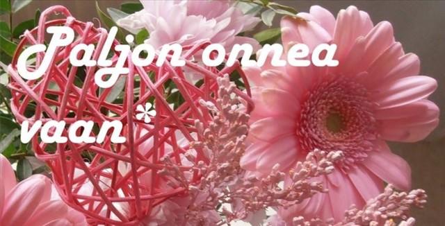 onnea_850x433.jpg
