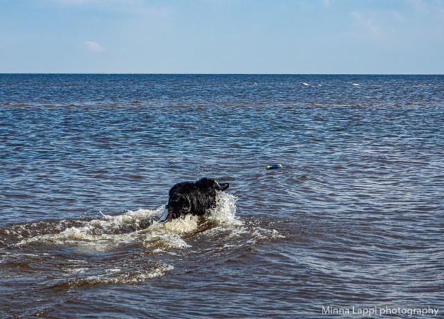 uimarannalla-5.jpg