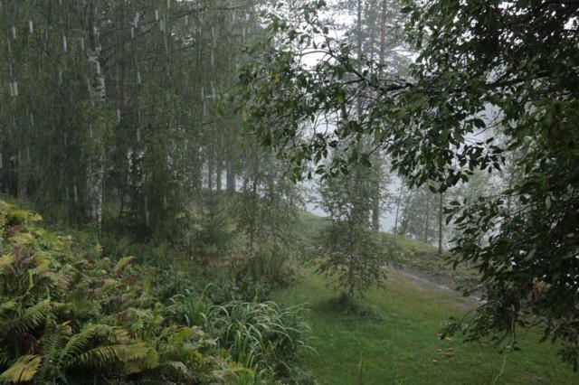 Sataa.jpg