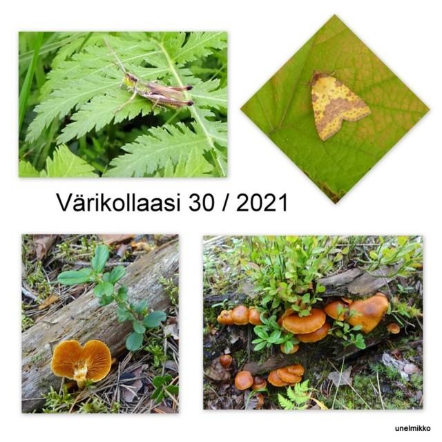 2021-08-192.jpg