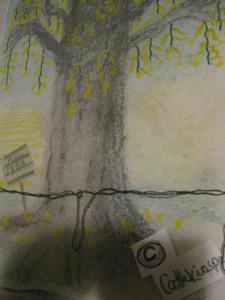 vanha puu 017.JPG