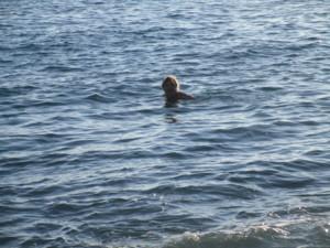 Juha uimassa meressä.JPG
